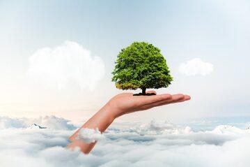 Ochrona środowiska, zdjęcie ilustracyjne