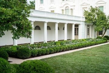 Ogród Różany w Białym Domu