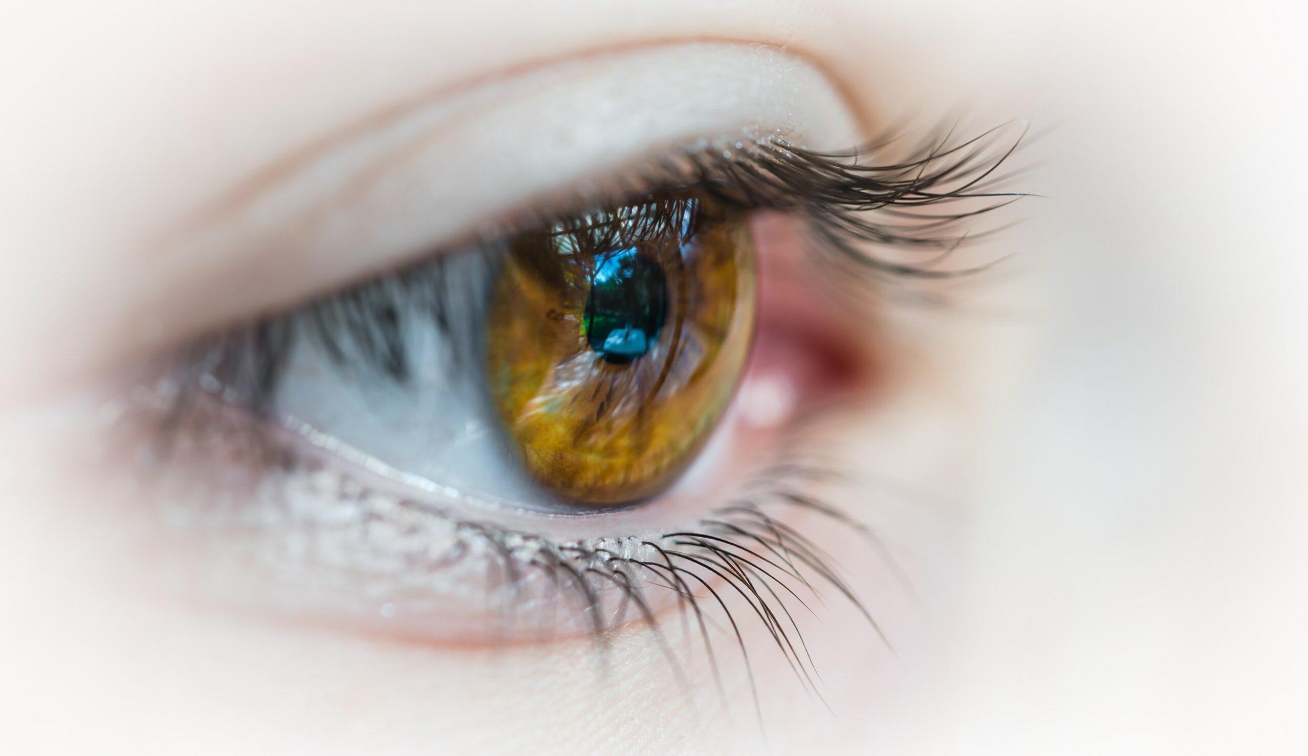 Oko, zdjęcie ilustracyjne