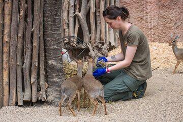 Opiekunka zwierząt z wrocławskiego ZOO