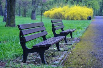 Park, zdjęcie ilustracyjne