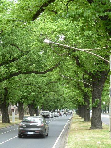 Parkville w Melbourne