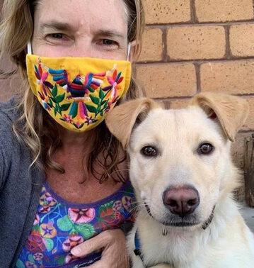 Pies Boston szuka domu. Mascotas Coyoacán nagłaśnia jego historię
