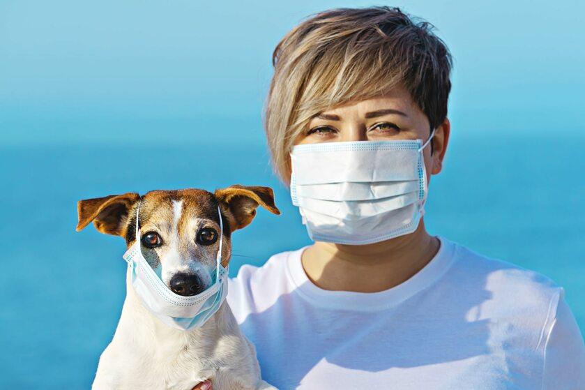 Pies i kobieta w maskach chirurgicznych (zdj. ilustracyjne)
