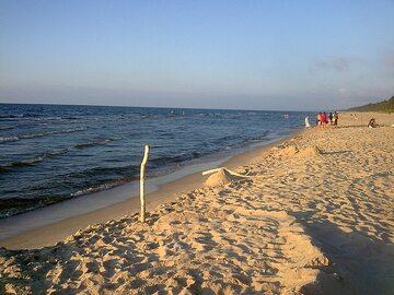 Plaża w pobliżu Sztutowa (zdj. ilustracyjne)