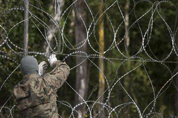Płot na polsko-białoruskiej granicy