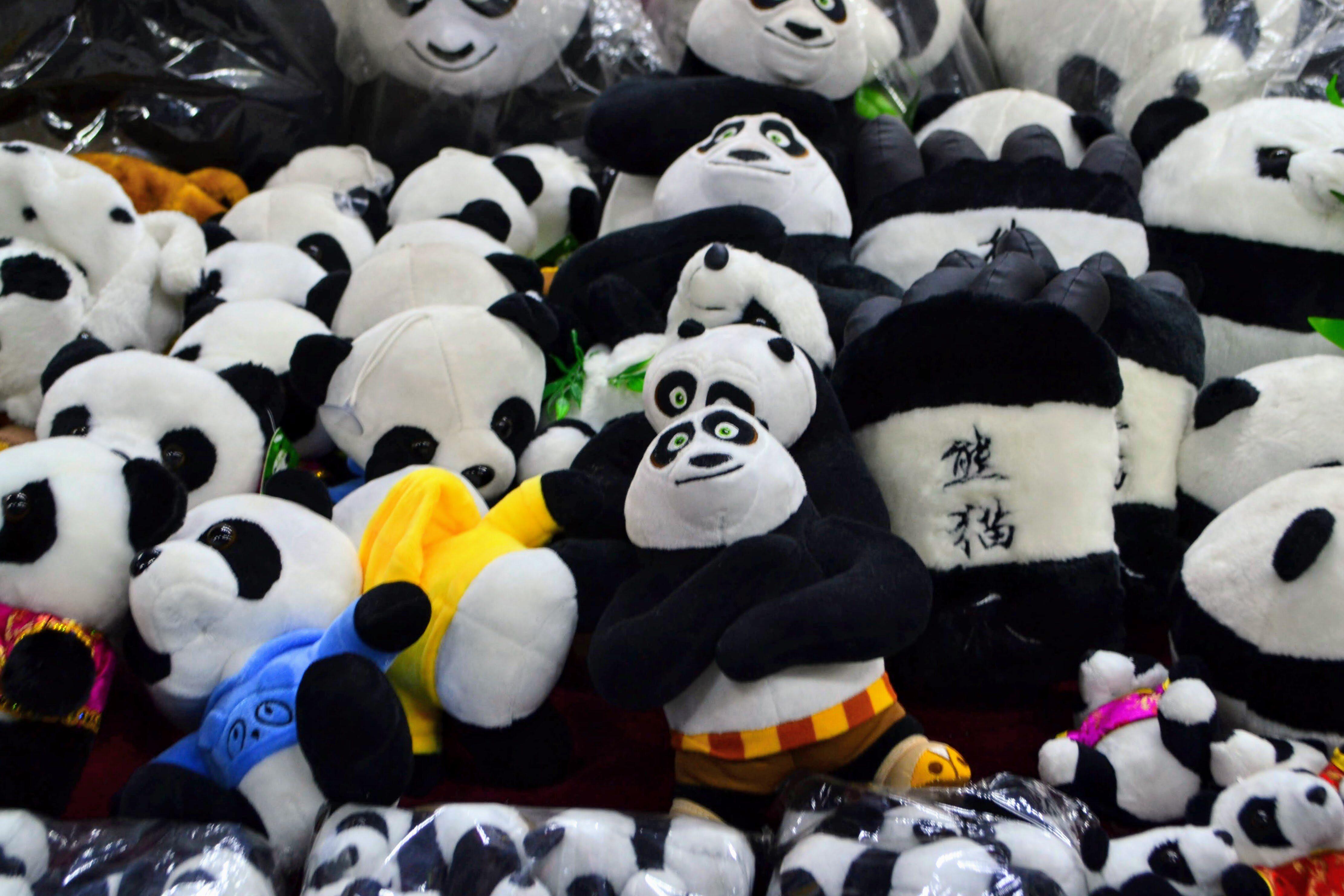 Pluszowe pandy, zdjęcie ilustracyjne