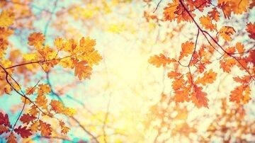 Pogoda. Najbliższe dni będą słoneczne