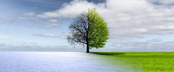 Pogoda, zdjęcie ilustracyjne
