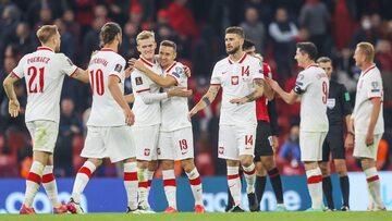 Polacy po meczu z Albanią