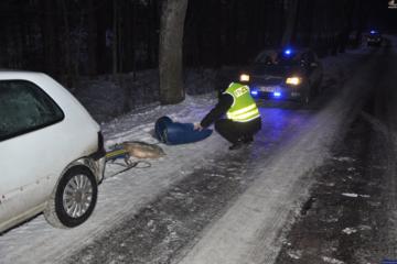 Policja interweniuje ws. kuligu pod Elblągiem