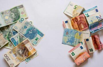 Polski złoty i euro, zdj. ilustracyjne