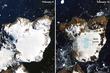 Poziom pokrywy lodowej na Antarktydzie