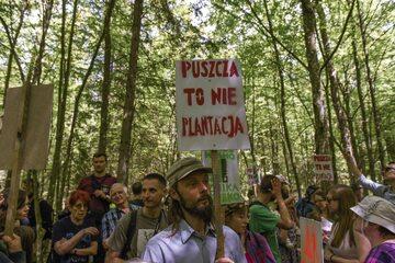Protest ekologów w Białowieży
