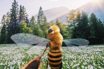 Pszczoła influencerka
