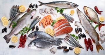 Ryby, zdjęcie ilustracyjne