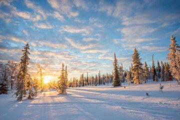 Słońce, zima, zdj. ilustracyjne