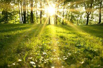 Słoneczna pogoda, zdjęcie ilustracyjne