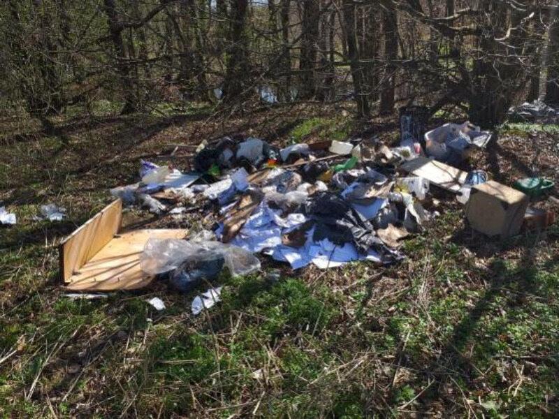Śmieci znalezione przez leśniczego