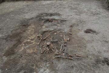 Szczątki ofiar rzezi wołyńskiej ekshumowane w Woli Ostrowieckiej
