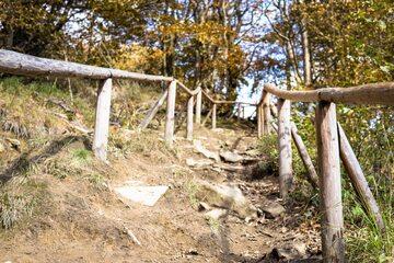 Szlak w Bieszczadach