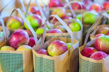 Torby pełne jabłek