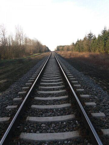 Tory kolejowe (zdj. ilustracyjne)