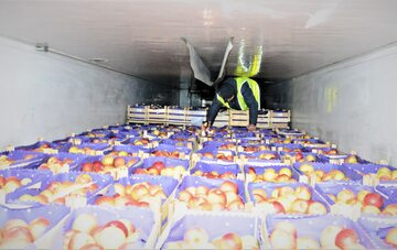 Transport jabłek z Serbii
