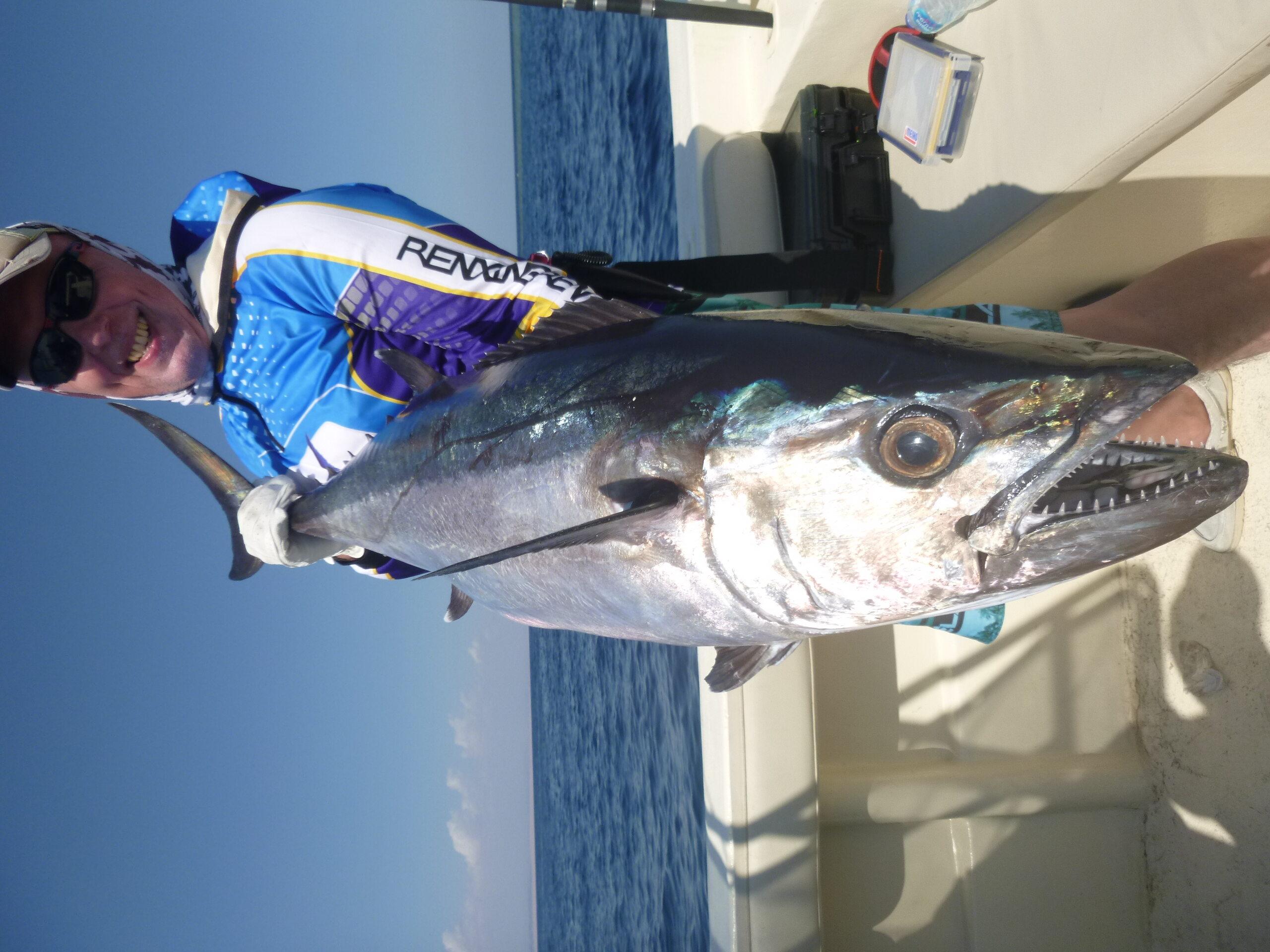 Tuńczyk zębaty Morze Czerwone