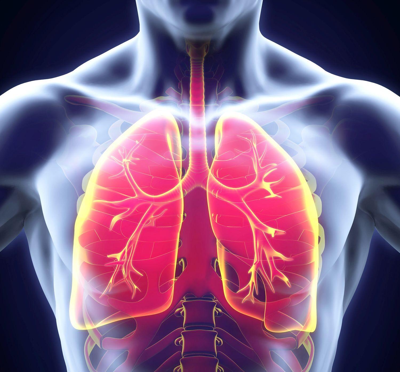 U osób z IPF pęcherzyki płucne nie mogą się odpowiednio rozszerzać, co zmniejsza ilość tlenu docierającego do krwi. To powoduje niedotlenienie narządów