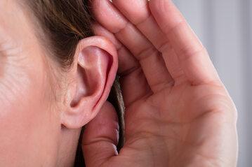 Ucho, zdjęcie ilustracyjne