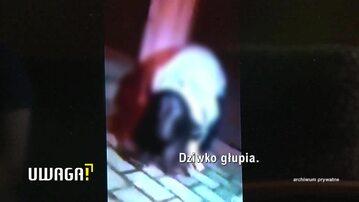 Uwaga! TVN: Nastolatki biją dziewczyny w Pruszkowie