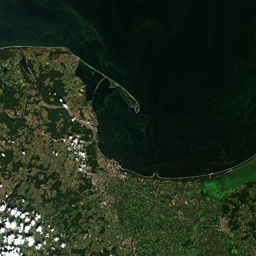 Widok satelitarny na polskie wybrzeże z 29 czerwca. Widoczne zielone sinice