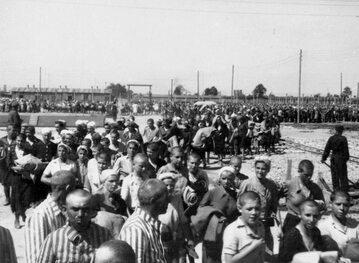 Więźniowie z Auschwitz-Birkenau podczas drogi do baraków obozowych, rok 1944