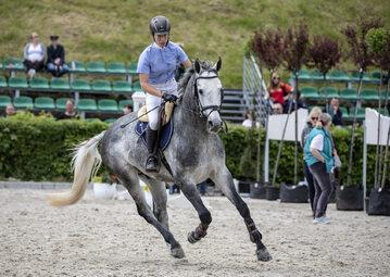 Zawody jeździeckie