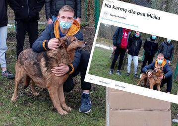 Zbiórka na karmę dla psa Miśka