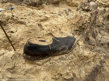 Zbiorowa mogiła znaleziona w lesie pod Warszawą