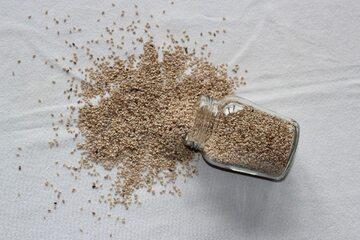 Ziarna sezamu