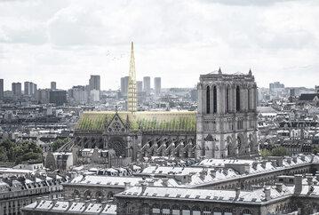 Zielone Notre Dame