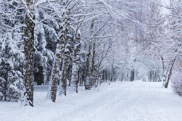 Zima, zdjęcie ilustracyjne
