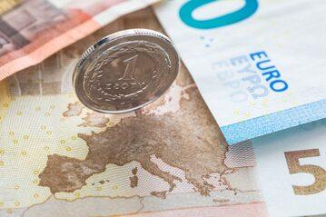 Złoty i euro