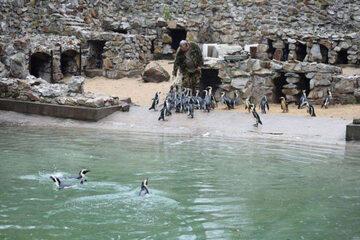 Zwierzęta w łódzkim ZOO