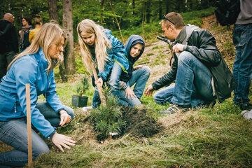 Żywiec Zdrój we współpracy z partnerami posadził już ponad 5 mln drzew
